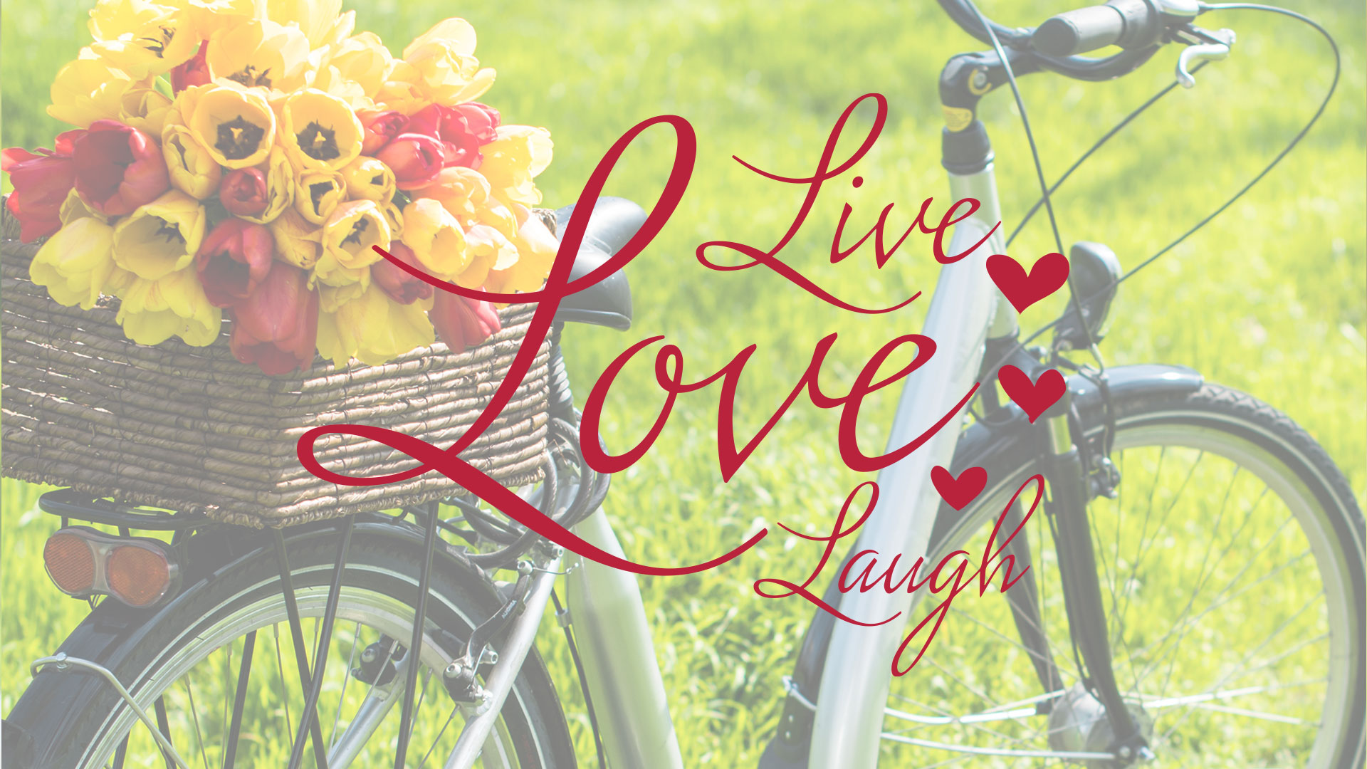 3l Live Love Laugh Spring Of Life Fellowship